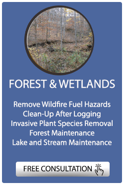 RYEX Services for Forests and Fields